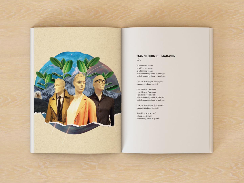 montage et conception graphique du livre de Navet Confit